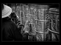Lhasa black&white